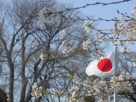Japón entre cerezos