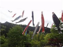 """Parque de montaña, """"Kodomo no hi"""", 2011"""